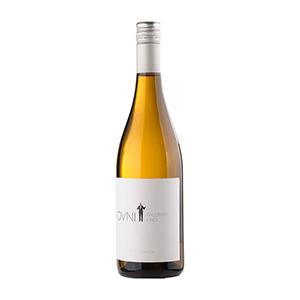 EQUIPO-NAVAZOS-OVNI-2015-PALOMINO-FINO-wein-vino-vinos-kaufen-ravenborg-panyvino-hamburg