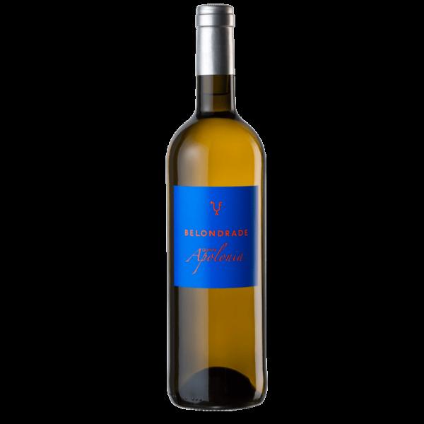 quinta apolonia belondrade lurton rueda ravenborg hamburg pan vino vinos wein kaufen online bestellen